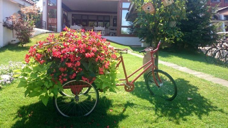 Bicicleta_Comana