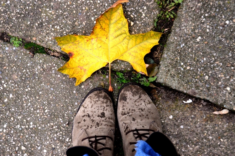 Autumn_shoes_leaf.jpg