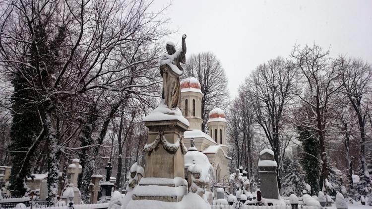bellu-cemetery