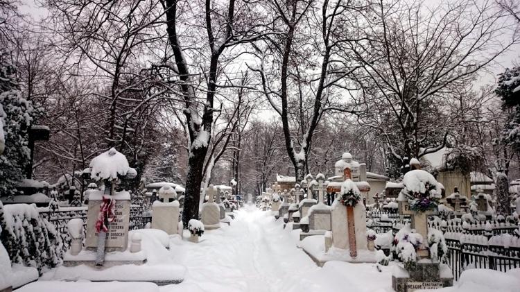 cemetery-bucharest-bellu