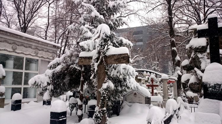 silence-snow