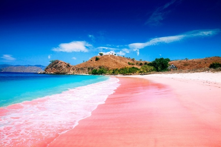 lombok pink beach indonesia