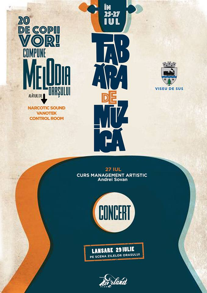 workshop de muzica_Viseu de Sus