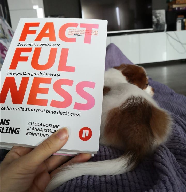 Factfulness 10 motive